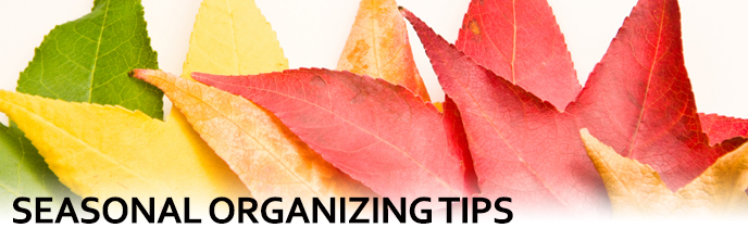 Seasonal Organizing Tips